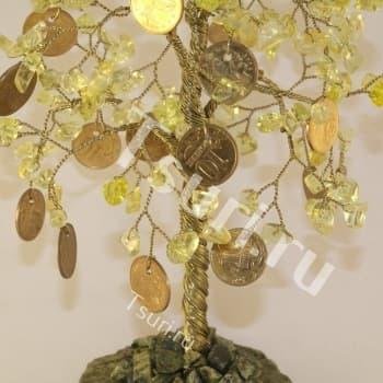 Дерево счастья Денежное Древо среднее