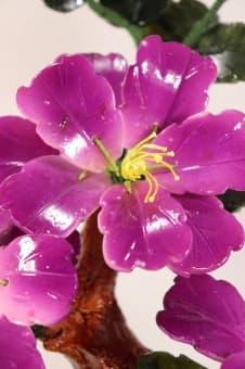 thumb_162003a Цветок Фиолетовый цвет