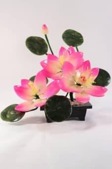 thumb_1620051 Цветок Три лилии