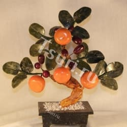 Thumb Bonsai Mandarin