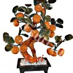 Мандариновое древо с 18-ю плодами