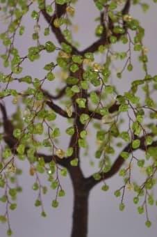 thumb_ru00101hca Коллекция деревьев счастья престиж