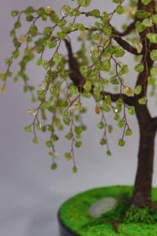 thumb_ru00101hcb Коллекция деревьев счастья престиж