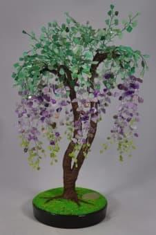 Дерево счастья Глициния