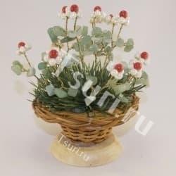 Цветы Божественного Шиповника