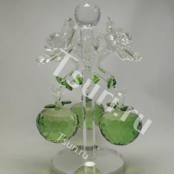 Яблоня зеленая
